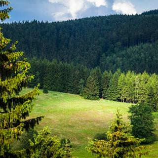 Pytloun Wellness Hotel Harrachov | Harrachov | Photo Gallery - 13